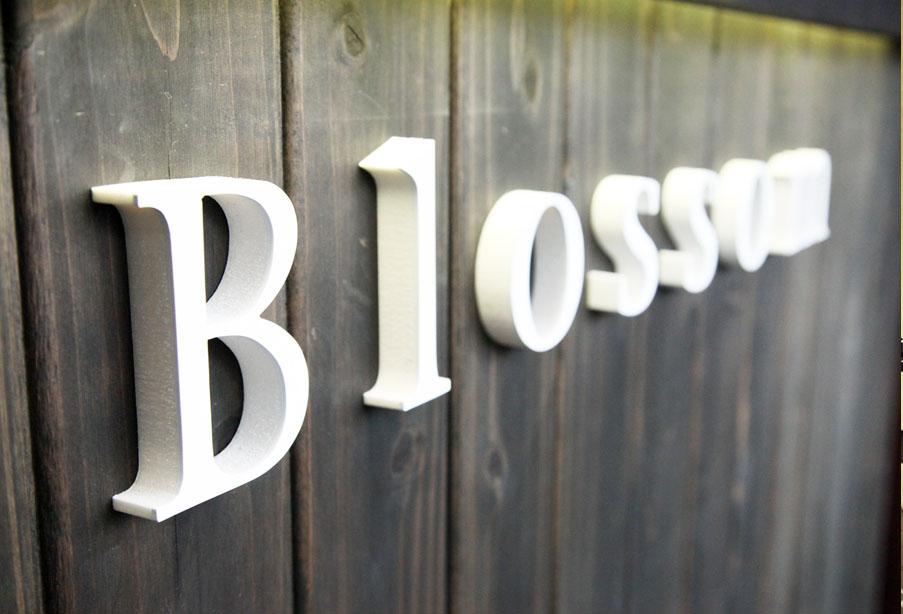 Blossom 上福岡店